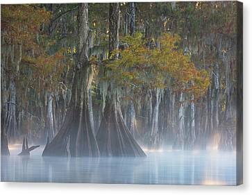 Autumn Canvas Print - Ode To Simplicity by Chris Moore