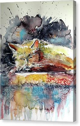 Old Cat Resting Canvas Print by Kovacs Anna Brigitta