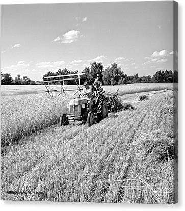 Old Combine Canvas Print by Larry Keahey