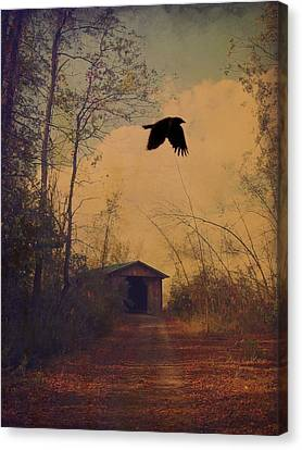 Lone Crow Flies Over The Old Country Road  Canvas Print