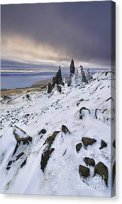 Old Man Of Storr Canvas Print by Rod McLean
