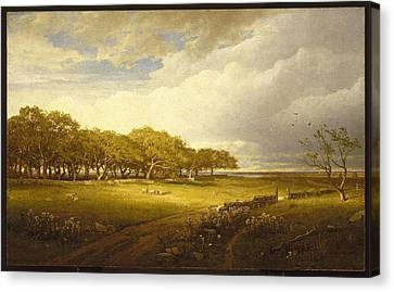 Old Orchard At Newport Canvas Print by William Trost Richards