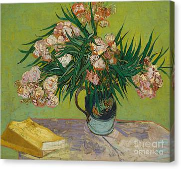 Oleanders, 1888 Canvas Print by Vincent Van Gogh