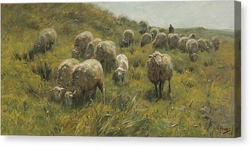On The Dunes Canvas Print by Anton Mauve