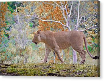 On The Move Canvas Print by Judy Kay
