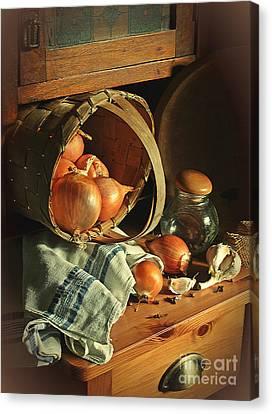 Onionart Canvas Print