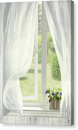 Open Country Window Canvas Print