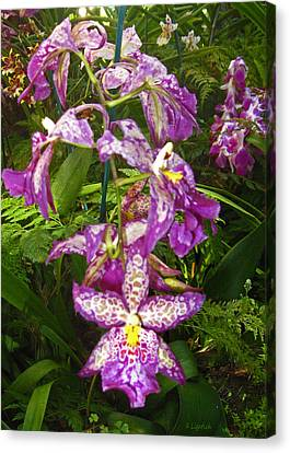 Orchids - Purple Polka Dots Canvas Print