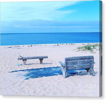 Out For A Swim Canvas Print by Sharon Eng