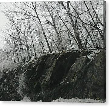 Canvas Print featuring the photograph Out Of The Rocks by Ellen Levinson