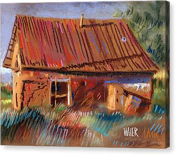 Outbuilding Canvas Print by Donald Maier