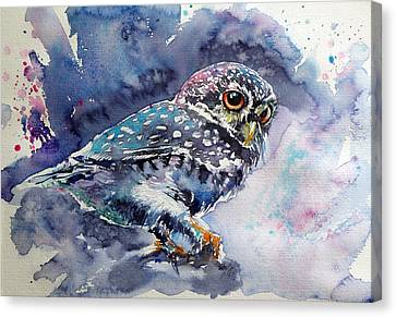Owl At Night Canvas Print by Kovacs Anna Brigitta