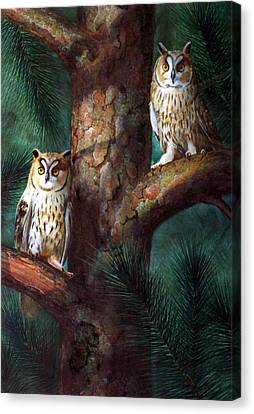 Owls In Moonlight Canvas Print by Frank Wilson
