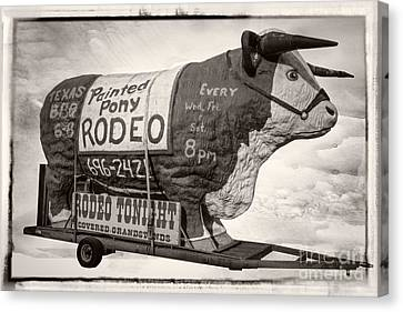 Painted Pony Rodeo Lake George Canvas Print by Edward Fielding