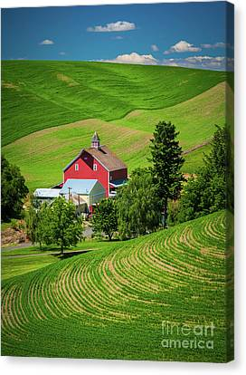 Palouse Red Barn Canvas Print by Inge Johnsson