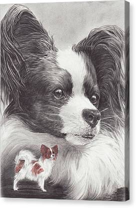 Papillon Canvas Print by Laurie McGinley