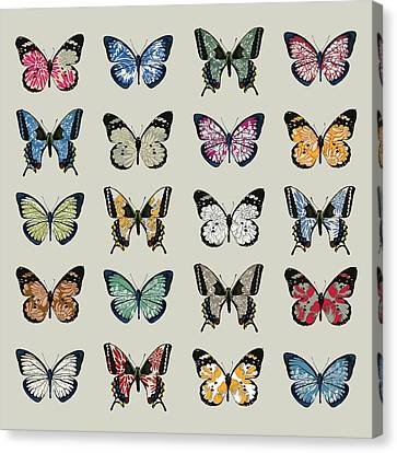 Insect Canvas Print - Papillon by Sarah Hough