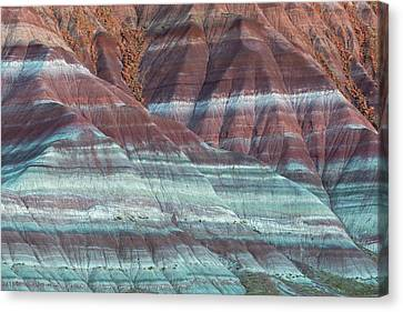 Paria Canyon Canvas Print