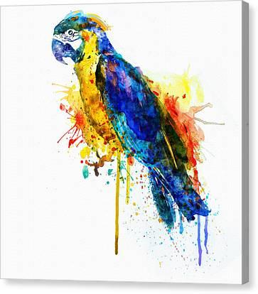 Colorful Paints Canvas Print - Parrot Watercolor  by Marian Voicu