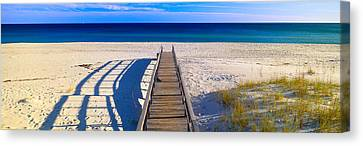 Pathway And Sea Oats On Beach At Santa Canvas Print by Panoramic Images