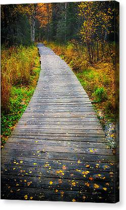 Pathway Home Canvas Print by Ed Boudreau