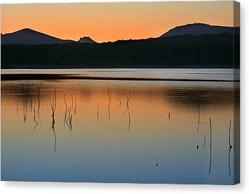 Peace At The Lake Canvas Print by Guido Montanes Castillo