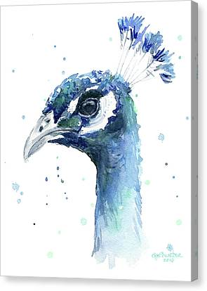 Peacock Watercolor Canvas Print by Olga Shvartsur