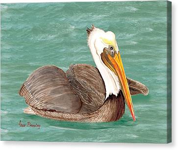 Pelican Floating Canvas Print by Anne Beverley-Stamps
