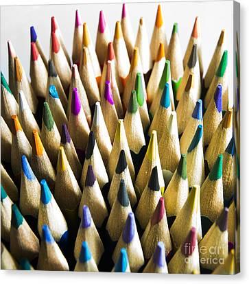 Pencils Canvas Print by Bernard Jaubert