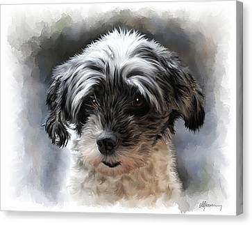 Pet Dog Portrait Canvas Print by Michael Greenaway