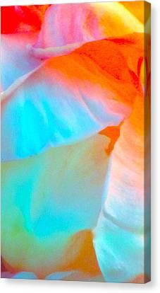 Petals Canvas Print by Gwyn Newcombe
