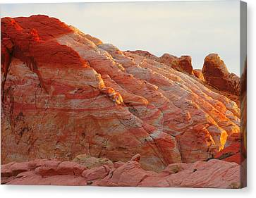 Petrified Fire Canvas Print by Christine Till