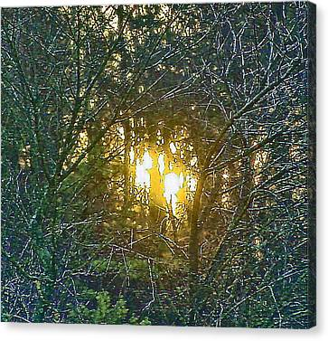 Photo Winter Solstice Dawn Canvas Print by Ray  Petersen