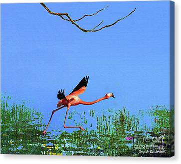 Pink Flamingo Canvas Print by Jerry L Barrett