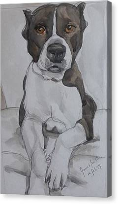 Pit Bull Canvas Print by Janet Butler