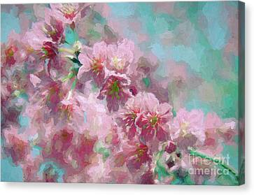 Plum Blossom - Bring On Spring Series Canvas Print