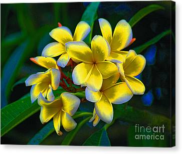 Canvas Print featuring the photograph 1- Plumeria Perfection by Joseph Keane
