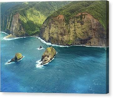 Pololu Point Canvas Print