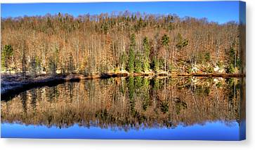 Canvas Print featuring the photograph Pond Reflections by David Patterson