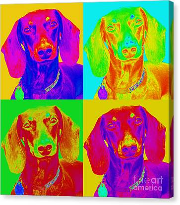 Pop Art Dachshund Canvas Print
