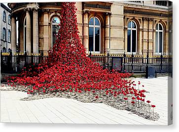 Poppies - City Of Culture 2017, Hull Canvas Print by Sarah Couzens