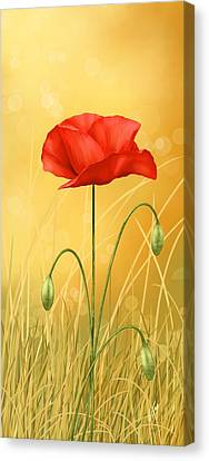 Poppy Canvas Print by Veronica Minozzi
