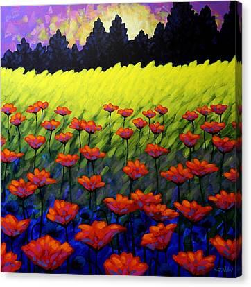 Poppy Vista Canvas Print by John  Nolan