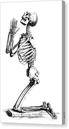 Grim Reaper Canvas Print - Praying Skeleton by William Cheselden