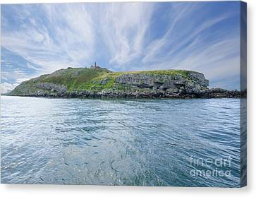 Puffin Island Canvas Print by Steev Stamford