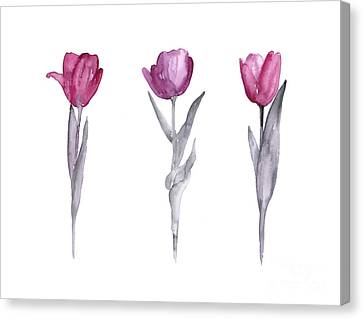 Garden Flowers Canvas Print - Purple Tulips Watercolor Painting by Joanna Szmerdt