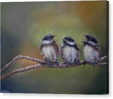 Quarelling Canvas Print