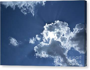 Canvas Print featuring the photograph Radiance by Megan Dirsa-DuBois
