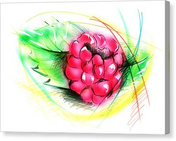 Raspberry Canvas Print by Nick Freemon
