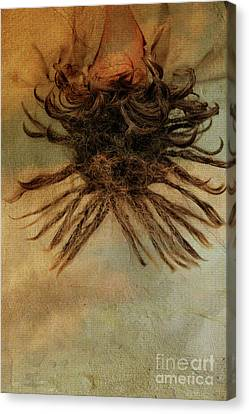 Canvas Print - Rasta Head by Patricia Hofmeester